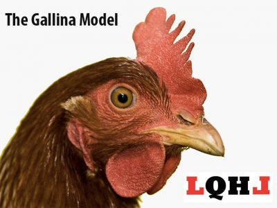 The gallina model o el gallo encerrado.